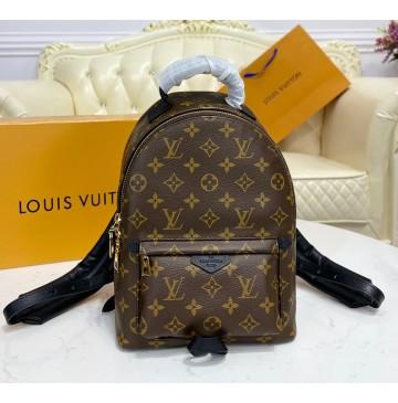 Louis Vuitton Monogram Palm Springs Backpack PM M44871
