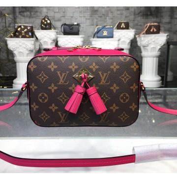 Louis Vuitton Monogram Canvas Saintonge Bag Freesia M43557